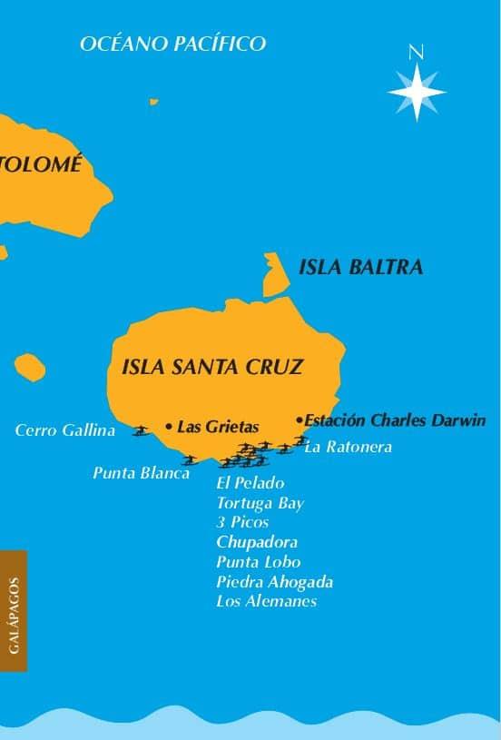 Ruta del Surf Galapagos Santa Cruz