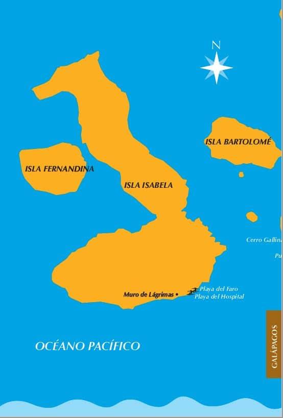 Ruta del Surf Galapagos Isabela